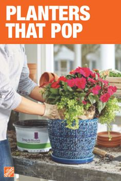 The Home Depot has everything you need for your home improvement projects. Click through to learn more about garden plants and more.