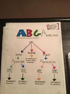ABGs usually are tricky for new nursing students. Planning School, Nursing Information, Nursing School Notes, Nursing Schools, Rn School, School Humor, Medical School, Nursing Mnemonics, Pathophysiology Nursing