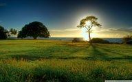 nature, landscape, wallpaper, wallpapers, desktop
