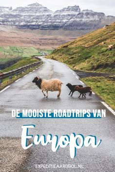 Road Trip Europe, My Road Trip, Road Trip With Kids, Europe Travel Tips, Travel Camper, Beste Hotels, Solo Travel, Where To Go, Adventure Travel