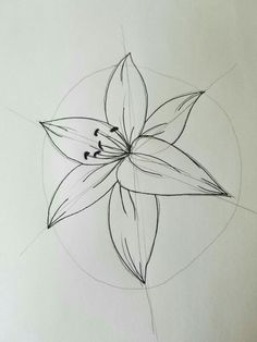 Learn To Draw A Realistic Rose - Drawing On Demand Lilies Drawing, Floral Drawing, Painting & Drawing, Flower Line Drawings, Flower Sketches, Colorful Drawings, Easy Drawings, Basic Drawing, Drawing Ideas