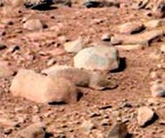 Mars Rodent Photo By Curiosity Rover, NASA Photo, No Photoshop, Find It Yourself At NASA Is it a trick of light and just a rock or perhaps a living creature? It is not Photoshop as the snip is from the original NASA photo. Aliens And Ufos, Ancient Aliens, Sonda Curiosity, Rosetta Spacecraft, Nasa Curiosity Rover, Mars Pictures, Nasa Photos, Red Planet, Mars Planet