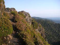 The Appalachian Trail near Charlies Bunion in the Great Smoky Mountains.