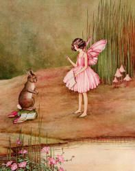 """One of the Fairies gave him lessons in French every morning. From """"Bunny and Brownie ... """""""