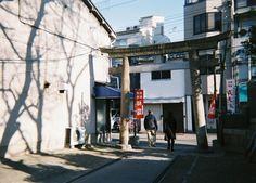New year in Japan | 写ルンです | instagram | Kunihito Miki Photography |