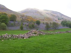 Bluebells on the Ochil Hills - very near to where we make our marvelous soap!