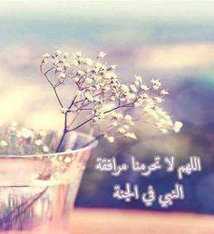 اللهمّ لاتحرمنا مرافقة النبيّ في الجنة .. اللهمّ آمين