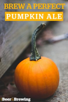 Make pumpkin soup from leftover Halloween pumpkins with the help of Bohemia head chef Steve Smith Pumpkin Beer, Pumpkin Soup, Pumpkin Spice, Candy Pumpkin, Pumpkin Puree, Pumpkin Photos, Fete Halloween, Halloween Night, Halloween Ideas