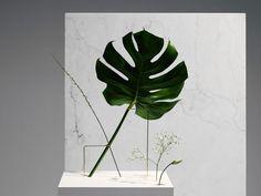 """Esses """"vasos"""" exploram novos ângulos para disposição das flores   IdeaFixa"""