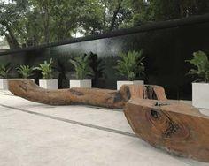 Brazil garden