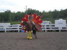 4-H Horse Costume Class Ideas | Costume class