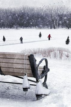 It used to snow every winter in Missouri when I was a kid, and we'd go skating on the lake in the park across the street. Those are such good memories. Snow is very iffy in Texas as are seasons!
