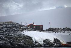 Jougla Point, Antarctica  Jenny S.W. Lee Photography  www.jennyswl-art.com