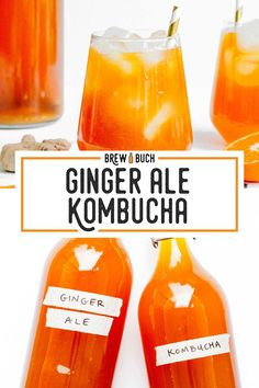 With citrusy orange juice, spicy fresh ginger, and aromatic cloves, this Gingerade copycat kombucha flavor is more than meets the eye. Fermentation Recipes, Homebrew Recipes, Kombucha Fermentation, Diy Kombucha, Kombucha Flavors, Probiotic Drinks, Ginger Kombucha Recipe, Smoothie Drinks, Smoothie Diet