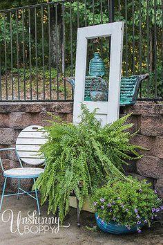 Shade Plants: Boston Fern