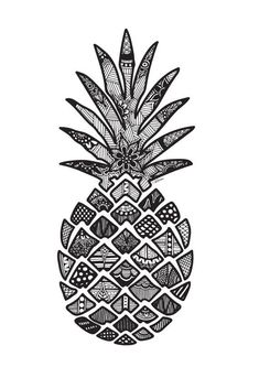 This Zentangle Pineapple is a print of an original design drawn by Cassidy Dillon. Pineapple Drawing, Pineapple Art, Pineapple Sketch, Pineapple Design, Pinapple Tattoos, Art Sketches, Art Drawings, Mandalas Drawing, Skull Art