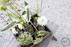 KUKKALA #leikkokukat #cutflowers