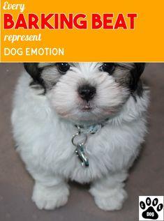 Many Useful Hints About Dog Barking You May Need #dogbarking Dog Emotions, Stop Dog Barking, Love Pet, Pets, Animals, Animales, Animaux, Animal, Animais