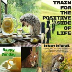 Be happy. Sunday Funday, Sunday Morning, Happy Sunday, Sunday Wishes, Morning Qoutes, Days Of Week, Happiness Is A Choice, Strawberry Shortcake, The Dreamers