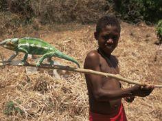 Boy with Chameleon, Nosy Be, Madagascar, Africa