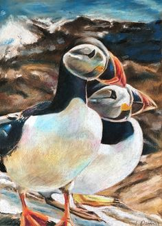 Puffins by Laura Dalton Bird Paintings, Pastel Paper, Bird Drawings, Painting & Drawing, Birds, Animals, Art, Paintings Of Birds, Art Background