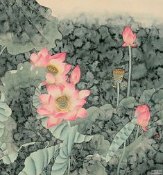 Zhou Yansheng (Chinese artist b. Chinese Painting, Chinese Art, Painting & Drawing, Watercolor Paintings, Flower Paintings, Lotus Art, Traditional Paintings, Color Of Life, Japanese Art