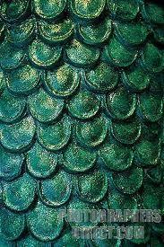 fish scales - Google Search