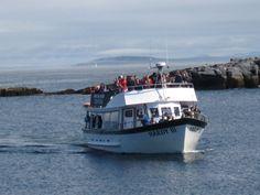 almost to the Monhegan Island dock. Monhegan Island, Maine, Boat, Beautiful, Dinghy, Boats, Ship