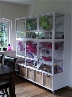 Improve the lives of your pets and make a home made degu cage for them from old furniture. Add toys and cage enrichment and you will have happy goos! Cage Chinchilla, Ferret Cage, Hamster Cages, Pet Rat Cages, Cage Petit Animal, Small Animal Cage, Diy Pour Chien, Guinea Pig House, Guinea Pig Cages