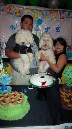 el cumpleañero y la novia fiesta dog