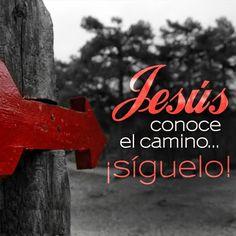 Mateo 16:24 Entonces Jesús dijo a sus discípulos: Si alguno quiere venir en pos de mí, niéguese a sí mismo, y tome su cruz, y sígame.♔