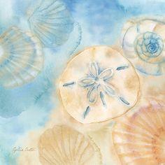 RB7430CC <br> Watercolor Shells III <br> 12x12