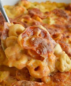 If you love macaroni & cheese and pepperoni pizza you will flip for this Cheese Tortellini Pepperoni Pizza Casserole Recipe! This tortellini mac & cheese is combined with the flavors of pepperoni pizza then baked to Cheese Tortellini Recipes, Tortellini Bake, Macaroni Cheese, Mac Cheese, Casserole Dishes, Casserole Recipes, Pasta Casserole, Skillet Recipes, Pasta Dishes
