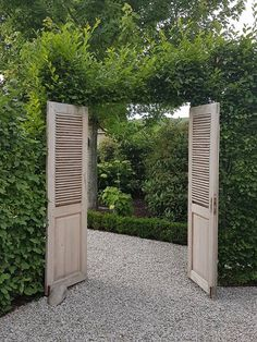 J 39 previous shutters like backyard entrance the AC Most Beautiful Pictures, Cool Pictures, Sun Loving Plants, Old Shutters, Garden Entrance, Types Of Plants, Garden Inspiration, Outdoor Gardens, Outdoor Living