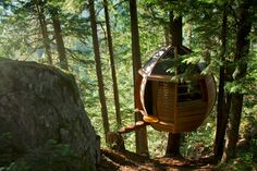 Hidden Hemloft: Secret Treehouse in the Woods of Whistler