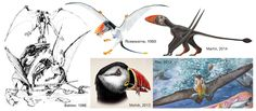 Mark Witton.com Blog: Why Dimorphodon macronyx is one of the coolest pterosaurs