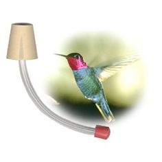 These make fantastic humming bird feeders w/ wine bottles and wrap in copper hanger to keep the ants off it.