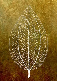 Experiment with negative space? a botanical drawing of a leaf
