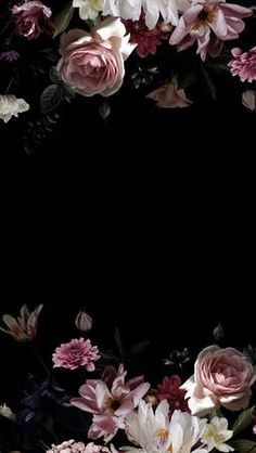 Black background for text and frame of luxurious roses and peonies. Beauty and Romance. Black Floral Wallpaper, Floral Wallpaper Phone, Vintage Floral Backgrounds, Wallpaper Nature Flowers, Vintage Flowers Wallpaper, Phone Wallpaper Images, Beautiful Flowers Wallpapers, Flower Backgrounds, Aesthetic Iphone Wallpaper