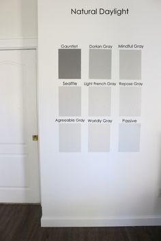 Nine Gray Paint Colors We Put to the Test for Your Home - Within the Grove Here are the 9 most popular Sherwin-William gray paint colors we put to the test in our home. We're hoping this helps you find the perfect gray for your home! Grey Paint Colors, Paint Colors For Living Room, Light Grey Paint Colors, Grey Accent Wall, Light Gray Paint, Mindful Gray, Grey Flooring, Indoor Paint Colors, Worldly Gray