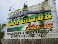 Per Dalton's request we will visit here again.Alligator Adventure in North Myrtle Beach, SC Myrtle Beach Vacation, North Myrtle Beach, Need A Vacation, Beach Trip, Adventure Golf, Us Beaches, Down South, 50 States, Road Trips