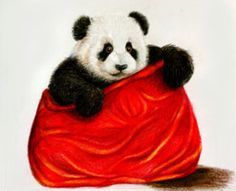 Panda by Alena-Koshkar on @DeviantArt