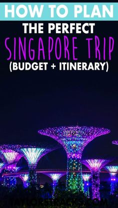 Plan your Singapore trip with this ultimate Singapore itinerary, a Singapore budget, the best places to see in Singapore and the top Singapore attractions. Singapore Travel Tips, Singapore Itinerary, Visit Singapore, Singapore Trip, Singapore Travel Outfit, Singapore Garden, Best Places To Travel, Cool Places To Visit, Travel Advice