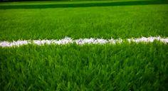Para pebisnis lapangan futsal pasti tahu betul betapa pentingnya rumput futsal yang digunakan. Kini, para penggemar salah satu…