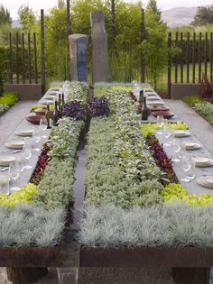 Future Feast in the Garden of Flow/Accumulation by Suzanne Biaggi, via Behance