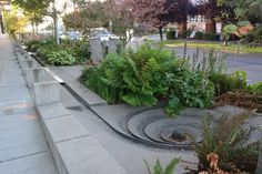 Landscaping Software - Offering Early View of Completed Project Channel On The Street, Seattle Landscape Elements, Urban Landscape, Landscape Architecture, Landscape Design, Landscaping Software, Garden Landscaping, Landscape Solutions, Garden Design Plans, Water Management