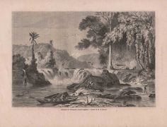 French Engraving from 1860- View of Weinachts Waterfalls, Guyana
