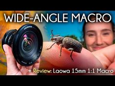 A Review of the Laowa 15mm f/4 and Its Crazy Close 4.7mm Working Distance