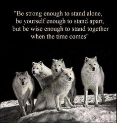 quotes+with+wolves | Displaying (19) Gallery Images For Native American Wolf Quotes...