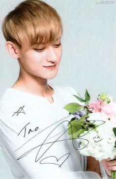 NATURE REPUBLIC - EXO New Photocard Tao! ©babyxiuxiu